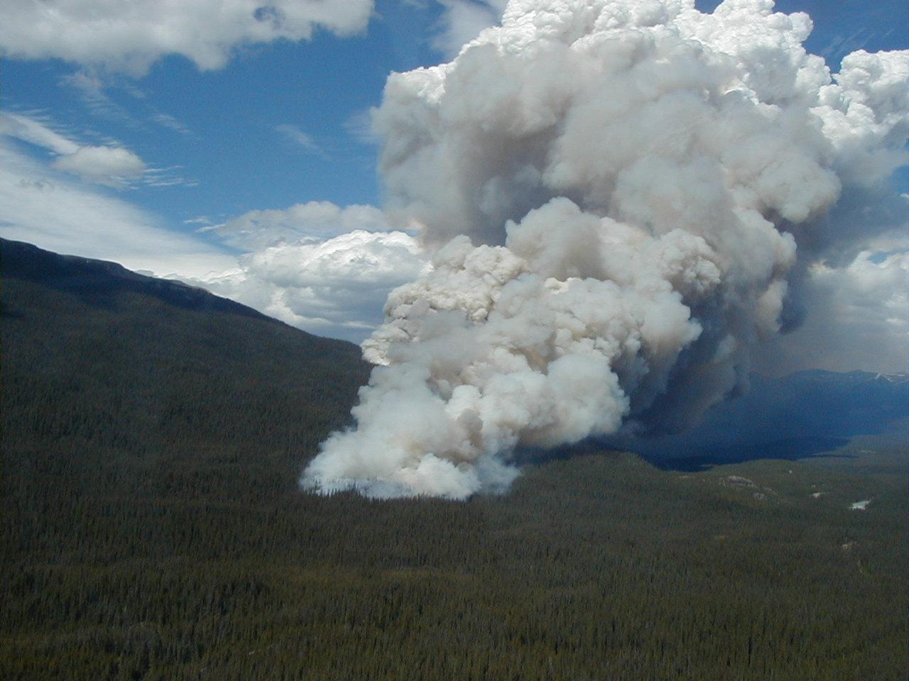 Aerial photograph of a forest fire and smoke plume