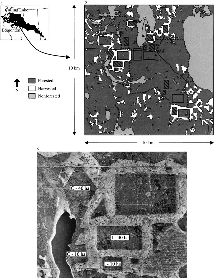 Schematic and aerial photos of harvest areas at Calling Lake experiment