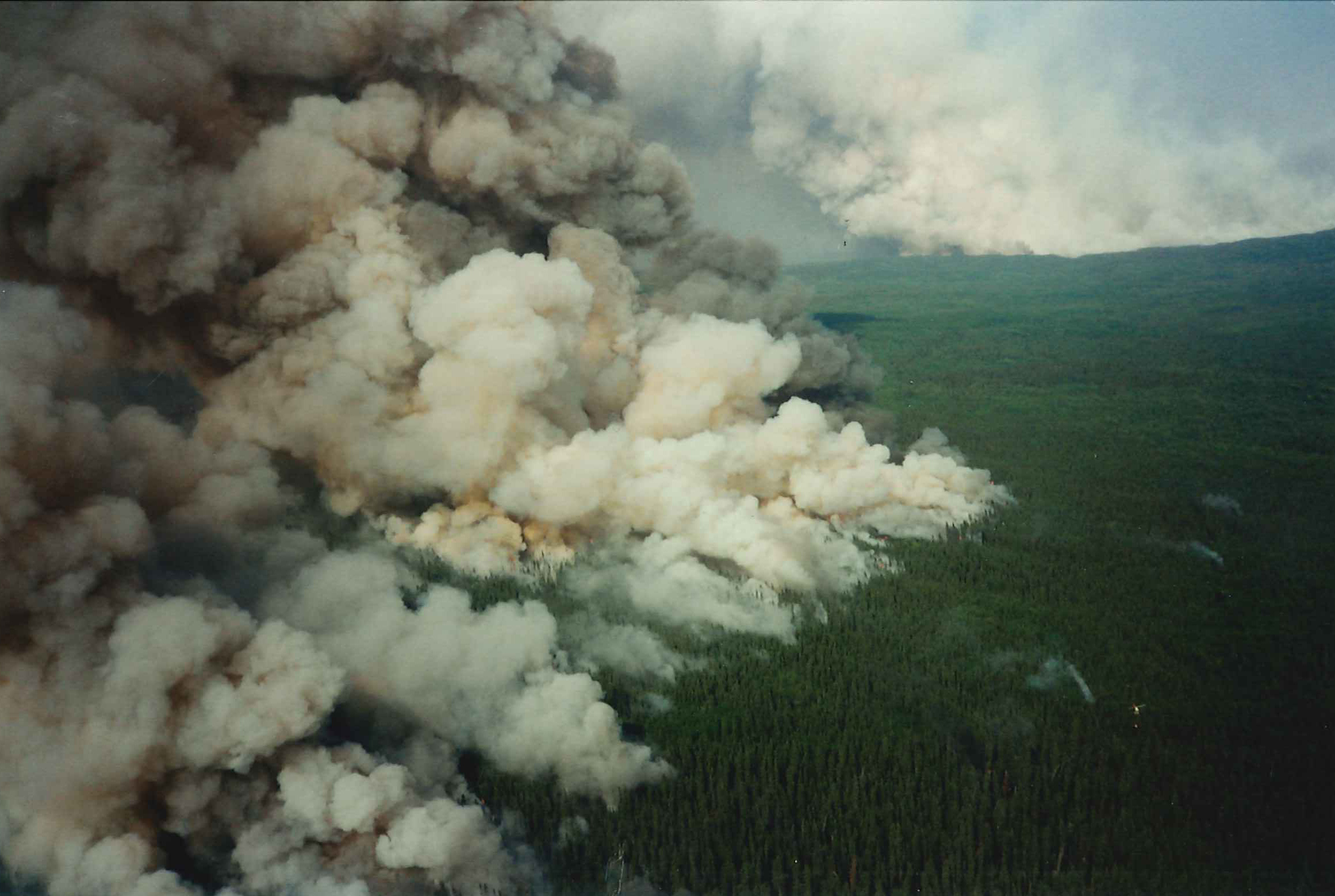 Aerial view of large forest fire front