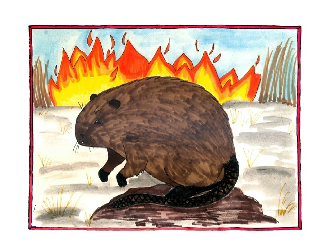 """Image from the cover of """"Muskrats and Fire"""""""